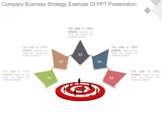 Company Business Strategy Example Of Ppt Presentation