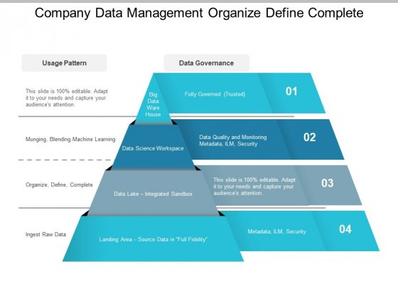 Company Data Management Organize Define Complete Ppt PowerPoint Presentation Summary Samples