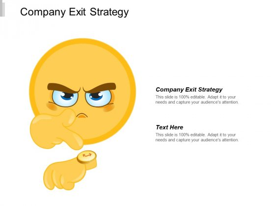 Company Exit Strategy Ppt PowerPoint Presentation Infographics Example File Cpb
