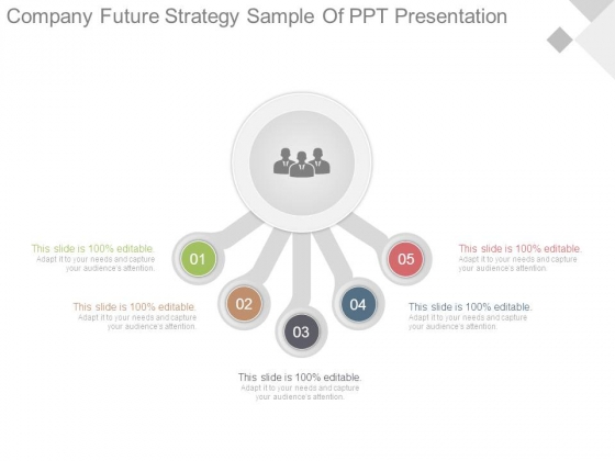 Company Future Strategy Sample Of Ppt Presentation