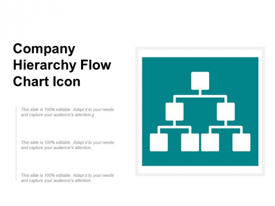 Company Hierarchy Flow Chart Icon Ppt PowerPoint Presentation Gallery Portfolio