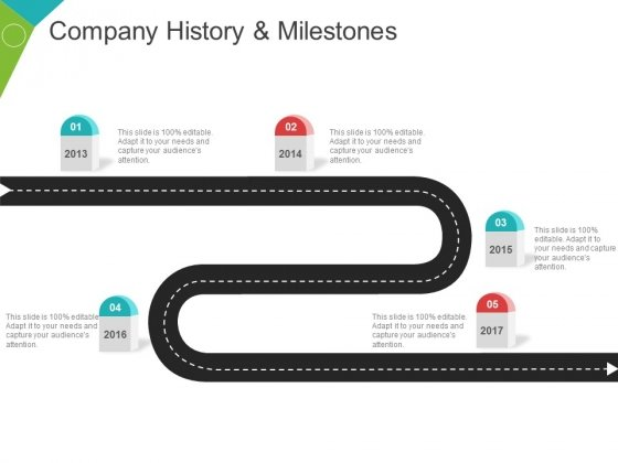 Company History And Milestones Template 2 Ppt PowerPoint Presentation Icon