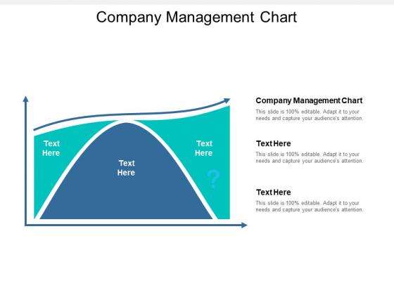 Company Management Chart Ppt PowerPoint Presentation Inspiration Portfolio Cpb