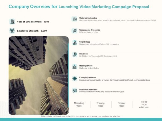 Company Overview For Launching Video Marketing Campaign Proposal Ppt File Topics PDF