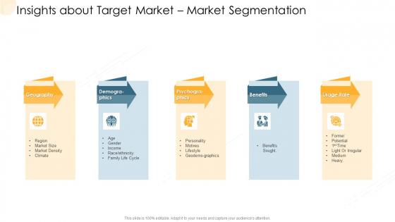 Company Process Handbook Insights About Target Market Market Segmentation Ppt Portfolio Good PDF