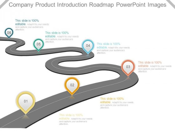Company Product Introduction Roadmap Powerpoint Images