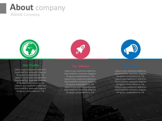 Company Profile Mission And Vision Powerpoint Slides