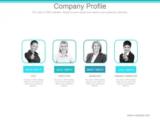 Company Profile Ppt PowerPoint Presentation Topics