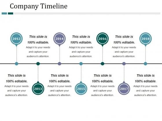 Company Timeline Ppt PowerPoint Presentation Pictures Diagrams