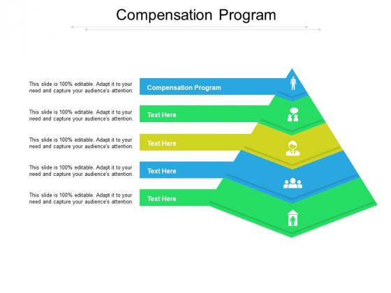 Compensation Program Ppt PowerPoint Presentation Pictures Brochure Cpb