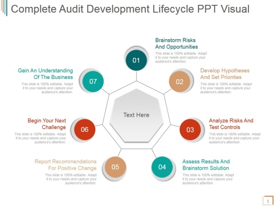 Complete Audit Development Lifecycle Ppt PowerPoint Presentation Infographic Template