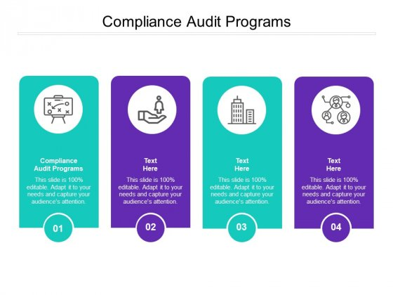Compliance Audit Programs Ppt PowerPoint Presentation Styles Layout Cpb