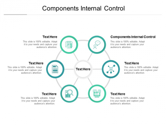 Components Internal Control Ppt PowerPoint Presentation Styles Files Cpb