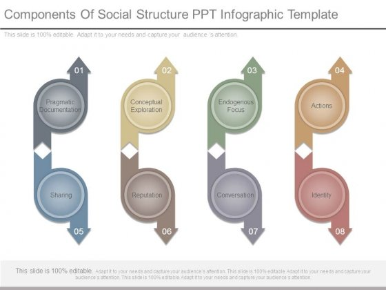 Components Of Social Structure Ppt Infographic Template