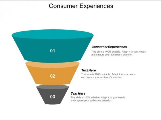 Consumer Experiences Ppt PowerPoint Presentation Ideas Background Images Cpb