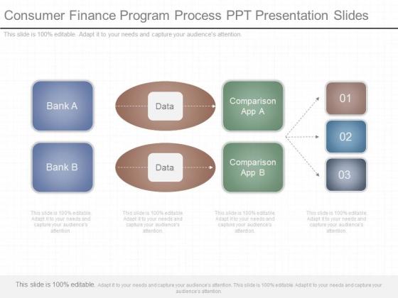 Consumer Finance Program Process Ppt Presentation Slides