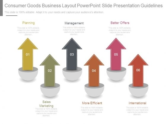 Consumer Goods Business Layout Powerpoint Slide Presentation Guidelines