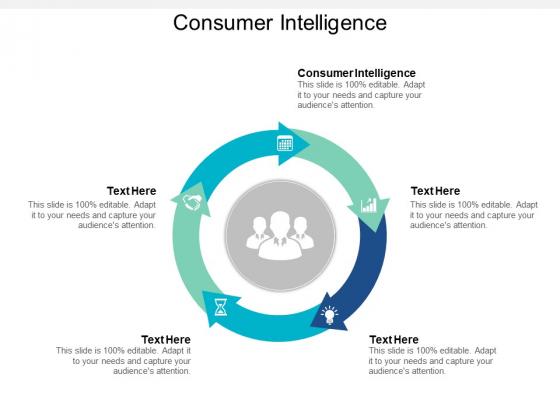 Consumer Intelligence Ppt PowerPoint Presentation Inspiration Summary Cpb