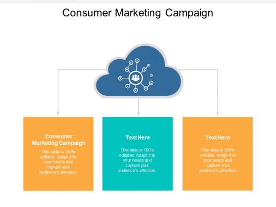 Consumer Marketing Campaign Ppt PowerPoint Presentation Inspiration Cpb
