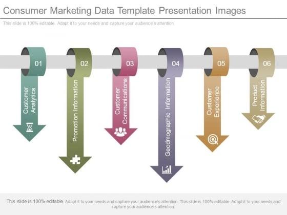 Consumer Marketing Data Template Presentation Images