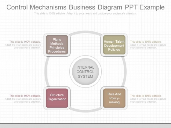 Control Mechanisms Business Diagram Ppt Example
