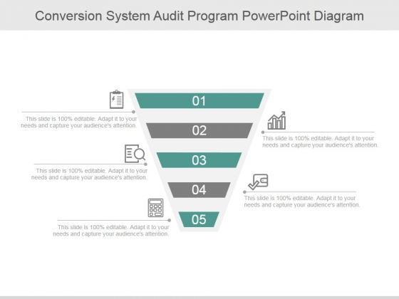 Conversion System Audit Program Ppt PowerPoint Presentation Topics