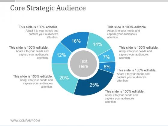 Core Strategic Audience Slide3 Ppt PowerPoint Presentation Slide