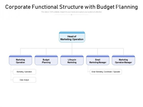 Corporate Functional Structure With Budget Planning Ppt PowerPoint Presentation File Slideshow