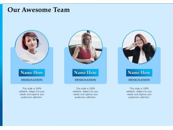 Corporate Fundraising Ideas And Strategies Our Awesome Team Ppt Ideas Outline PDF