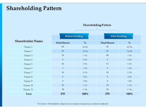 Corporate Fundraising Ideas And Strategies Shareholding Pattern Ppt Show Examples PDF
