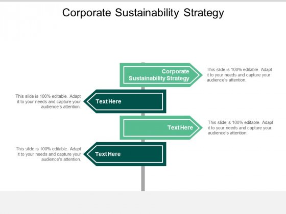 Corporate Sustainability Strategy Ppt PowerPoint Presentation File Design Inspiration Cpb
