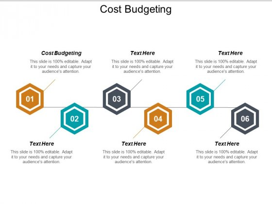 Cost Budgeting Ppt PowerPoint Presentation Summary Design Templates Cpb