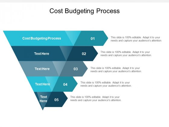 Cost Budgeting Process Ppt PowerPoint Presentation Outline Introduction Cpb