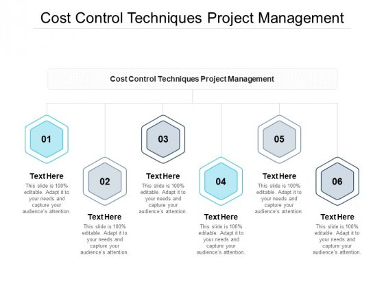 Cost Control Techniques Project Management Ppt PowerPoint Presentation Infographic Template Cpb Pdf