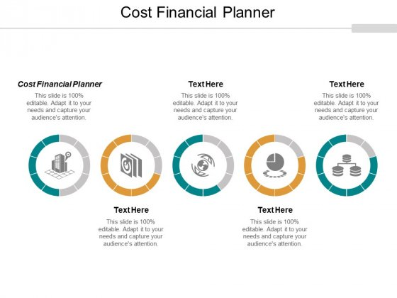 Cost Financial Planner Ppt PowerPoint Presentation Summary Professional Cpb