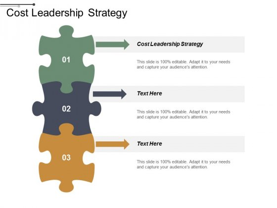Cost Leadership Strategy Ppt PowerPoint Presentation Inspiration Outline