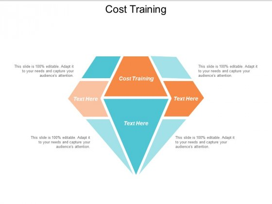 Cost Training Ppt PowerPoint Presentation Styles Examples Cpb