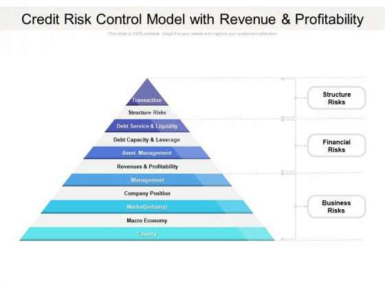 Credit Risk Control Model With Revenue And Profitability Ppt PowerPoint Presentation Inspiration Graphics Download