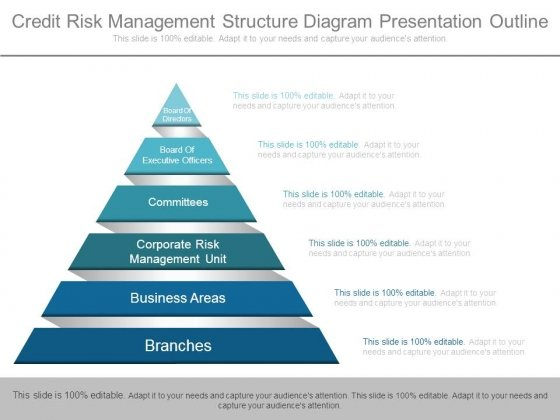 Credit Risk Management Structure Diagram Presentation Outline