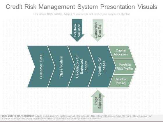 Credit Risk Management System Presentation Visuals