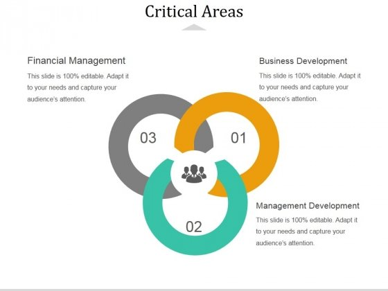 Critical Areas Ppt PowerPoint Presentation Summary Images