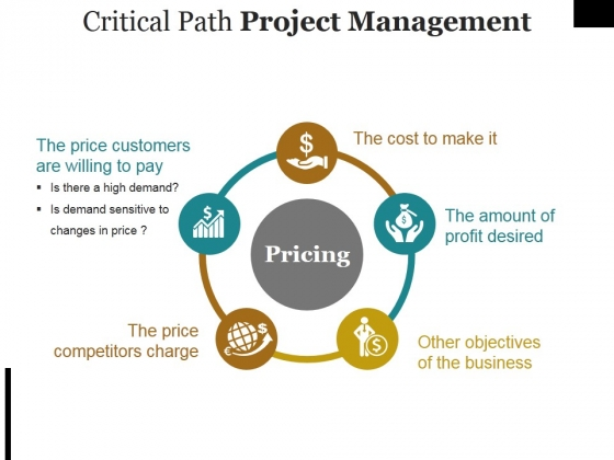 Critical Path Project Management Ppt PowerPoint Presentation Portfolio Ideas