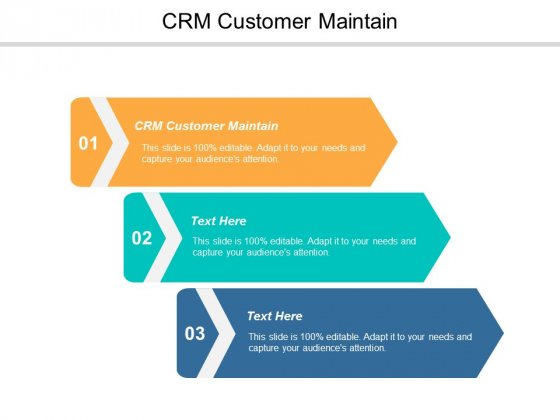 Crm Customer Maintain Ppt PowerPoint Presentation Gallery Files Cpb