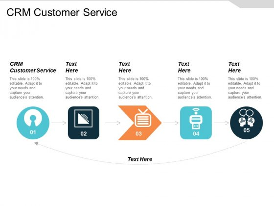 Crm Customer Service Ppt PowerPoint Presentation Professional Example Topics Cpb