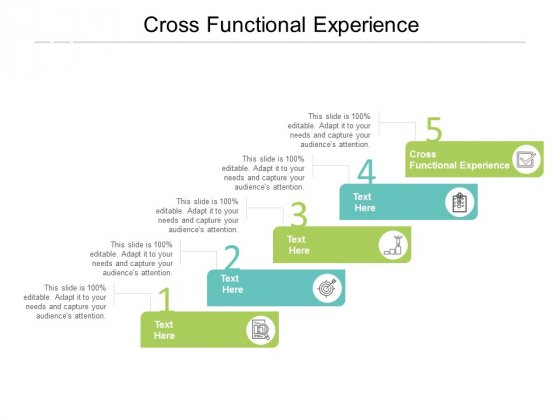 Cross Functional Experience Ppt PowerPoint Presentation Portfolio Background Images Cpb