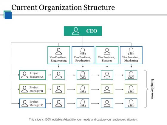 Current Organization Structure Ppt PowerPoint Presentation Portfolio Designs Download