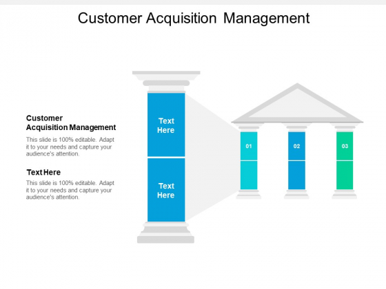 Customer Acquisition Management Ppt PowerPoint Presentation Icon Vector Cpb
