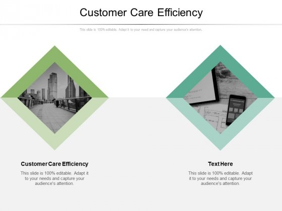Customer Care Efficiency Ppt PowerPoint Presentation Summary Background Image Cpb Pdf