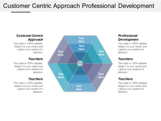 Customer Centric Approach Professional Development Ppt PowerPoint Presentation Layouts Graphics Download