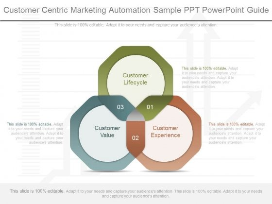 Customer Centric Marketing Automation Sample Ppt Powerpoint Guide
